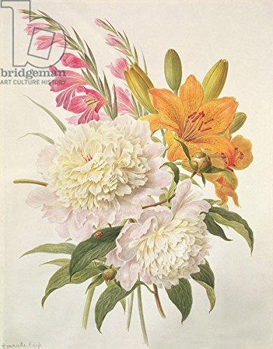 "Alu-Dibond-Bild 90 x 120 cm: ""Sprays of Gladioli, Peonies and Lilium Bulbiferum (w/c on paper)"", Bild auf Alu-Dibond"