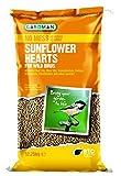 Gardman Geschälte Sonnenblumenkerne, 1er Pack (1 x 12.75 kg)