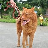 LA VIE Hundehalsband Leine 120cm Massiv und Komfort Soft-Leder Führleine Sichere No-tangle Training Traktion Seil Braun Leine für Mittlere und Große Hunde Braun