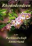 Rhododendren in der Parklandschaft Ammerland / Planer (Wandkalender 2019 DIN A2 hoch): Peter Roder mit einzigartigen Aufnahmen aus Deutschlands ... (Planer, 14 Seiten ) (CALVENDO Natur)