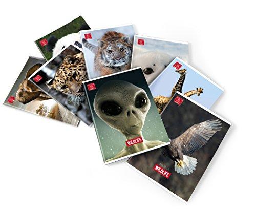 Pigna wildlife quaderno, confezione con 10 pezzi, a4
