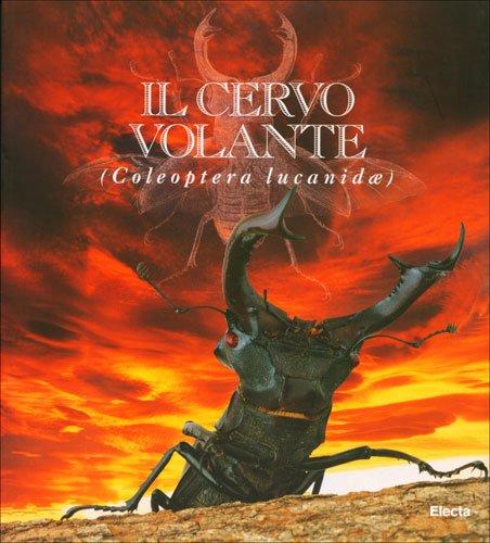 il-cervo-volante-lavventura-del-collezionista-catalogo-della-mostra-milano-3-novembre-31-dicembre-19