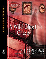 A Wild Ghost Chase (A Haunted Guesthouse Mystery)