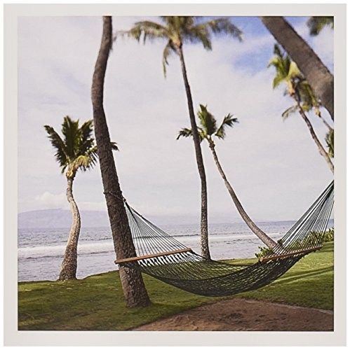 3drose-8-x-8-x-025-inches-hammock-under-hawaiian-palm-trees-maui-hawaii-jim-goldstein-greeting-cards