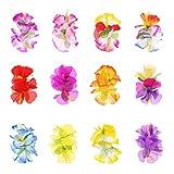 Barrette Fleur 12 pièces Multicolore Pince à Cheveux Fleur Hawaïenne pour les...