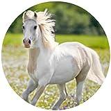 Tortenaufleger Tortenfoto Aufleger Foto Bild Horses Dream Pferd (5) rund ca. 20 cm *NEU*OVP*