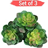 [Sponsored]TiedRibbons® Set Of 3 Artificial Succulents For Decoration | Succulent Artificial Plants | Artificial Succulent Plants | Artificial Succulent Plants For Home Decor