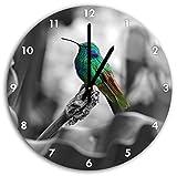 Colibri dans son habitat naturel B & W en détail, diamètre horloge murale 30cm avec le noir a les mains et le visage, des objets de décoration, Designuhr, composite aluminium très agréable pour salon, bureau