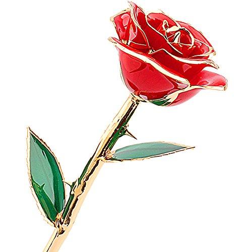 Rosa oro 24 carati tuffato reale rosa rossa fiore regali di san valentino amore regalo per l'amica di compleanno di natale anniversario giorno della decorazione del fiore (rosso)