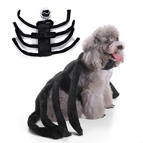 ye Haustier Hund Puppy Cute Spider Hundegeschirr Kostüm Kleidung Apparel Halloween Fancy Party ()