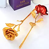 24 K Combo of Golden Rose & Red Rose, (Miradh Red & Golden Foil Decoration Artificial Rose Flowers in Gift Box, Best Gift for Mother's Day, Valentine's Day, Wedding Day, Birthday, Christmas, Thanksgiving, Home Décor)