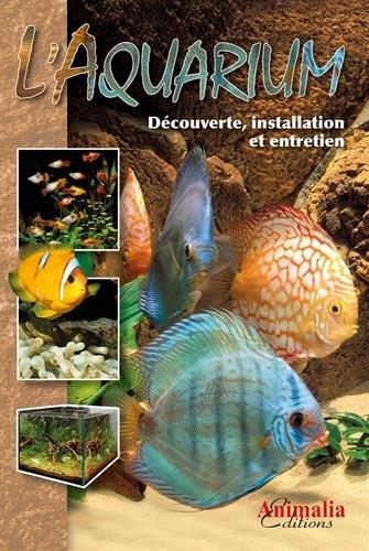 L'Aquarium : Découverte, installation et entretien