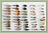50GOLDHEAD Forellenangeln Fliegen, Nymphe und summer gemischt Art, Größe, 10/12, Sinkers