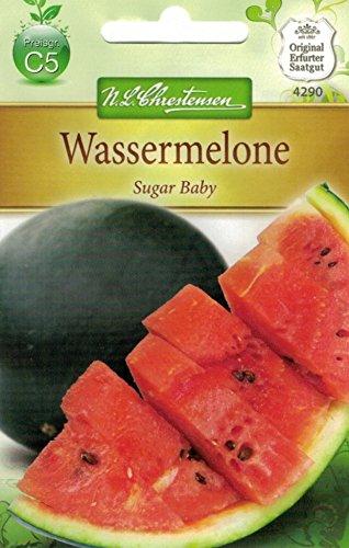 Chrestensen Wassermelone 'Sugar Baby' (Wassermelonen-gurken Samen)