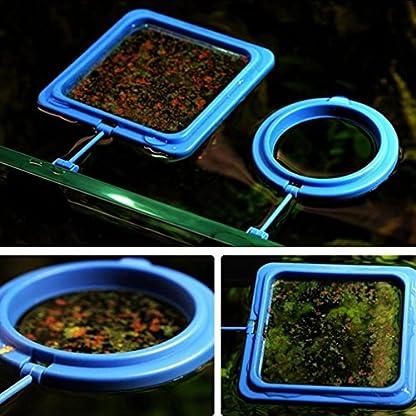 Gaddrt Aquarium Fish Feeding Ring, Fish Tank Station Floating Tary Food Feeder with Suction Caps 2