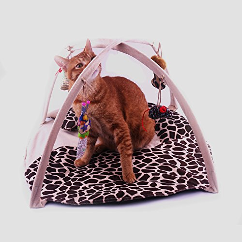 FUCNEN gato juguetes para interior Gatos interactivo Scratch actividad–Centro de juegos alfombra de juegos acolchada, diseño de gato cama manta de mascota gato suave con para colgar bolas de juguete y alfombrilla de ratón plegable multifunción de moda S