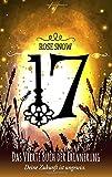 17 - Das vierte Buch der Erinnerung: (Die Bücher der Erinnerung 4) (Die Bucher Der Erinnerung)