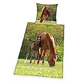 Herding Young Collection Bettwäsche-Set, Pferde Motiv, Bettbezug 135 x 200 cm, Kopfkissenbezug 80 x 80 cm, Baumwolle/Renforcé