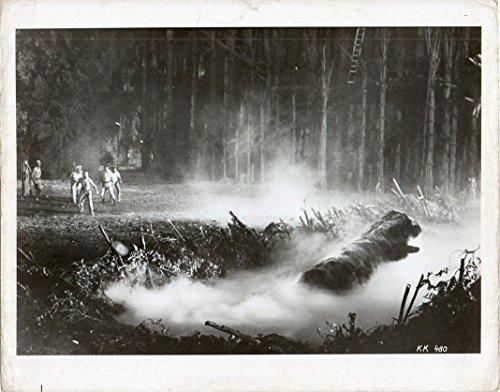 Photograph King Kong Jeff Bridges Jessica Lange Dino De Laurentis