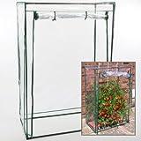 Tomaten-Gewächshaus Treibhaus für Pflanzen aller Art - Maße: 100 x 50 x 150 cm