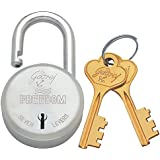 Godrej Locks Freedom 7 Levers - 3 Keys (Aluminium)