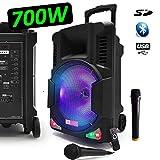 Enceinte Karaoké Baffle Mobile 700W Sono Active DJ PA 12' Autonome Batterie à LED RVB + 2 Micros VHF + Fil USB/SD/Bluetooth - LedWood Boostar1400