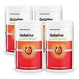 Sanct Bernhard Gelatine Gold Extra mit speziell entwickeltem Collagen-Hydrolysat 2,1 kg