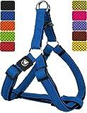 DDOXX Hundegeschirr Step-In Air Mesh | für große, mittelgroße, Mittlere & Kleine Hunde | Geschirr Hund | Katze | Brustgeschirr | Softgeschirr | Blau, XL - 3,8 x 75-110 cm