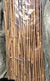 ARELLA IN BAMBU CANNA DIAM 10 MM GRANDE MT 2 X 3 CANUCCIATA PULITA LEGATA FILO FERRO Fras 421360