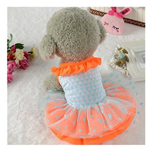 Hunde Kleidung, Transer® Cute Pet Puppy Hund Bekleidung Kleidung Hunde kurzer Rock Kleid Pets Spitze Kleid für Pet Hunde Kostüme (Kostüm Cute Womens Elf)
