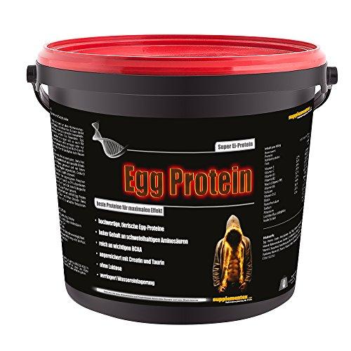 Egg Protein! 2kg Eimer Wettkampf Protein Sterole Testosteron hochwertiges tierisches Ei-Eiweißpulver Geschmack Erdbeere