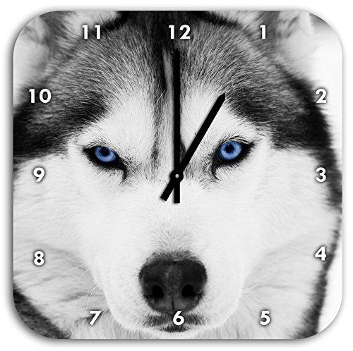 Stil.Zeit Husky mit blauen Augen schwarz/weiß, Wanduhr Quadratisch Durchmesser 28cm mit schwarzen Spitzen Zeigern und Ziffernblatt
