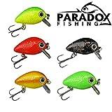 Paradox Fishing Neon Mini Wobbler Set 5 Wobbler (2,5cm 1,5g schwimmend Lauftiefe: 0,6m-1 m) zum Forellen Angeln oder als Barsch Köder - Wobbler Forelle Barsch Wobbler