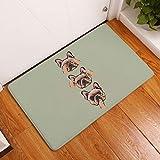 Nunbee Fußmatte Druck Designe Anti Rutsch Unterlage Wasseraufnahme Praktische Teppich Schmutzfangmatte Haustür Flur Innenbereich Aussen Lustig, Tier 1 50 * 80cm