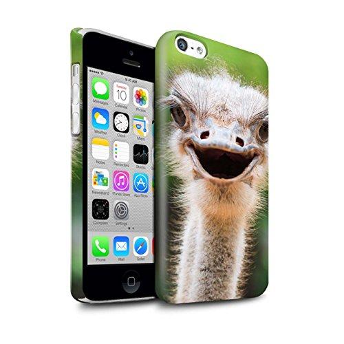 STUFF4 Glanz Snap-On Hülle / Case für Apple iPhone X/10 / Eidechse Muster / Wilde Tiere Kollektion Strauß / Emu
