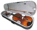 Cherrystone 4260180880250 4/4 40,6 cm (16 Zoll) Bratsche/Viola mit Koffer und Bogen
