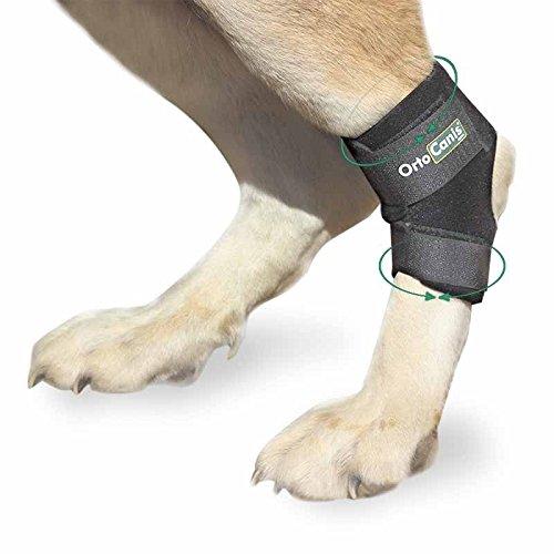Ortocanis Sprunggelenkbandage für Hunde- größe XXS