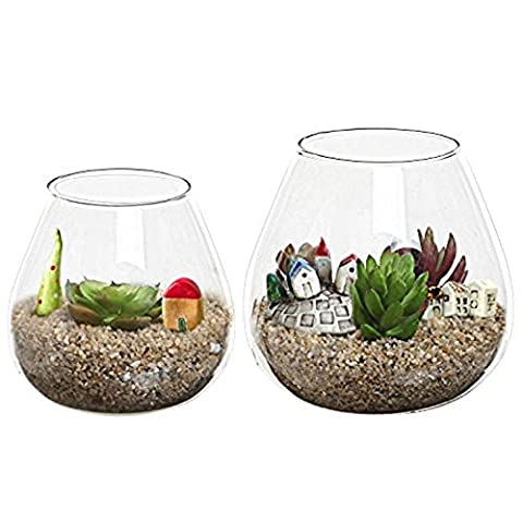 Set of 2 Decorative Modern Round Clear Glass Display Vases