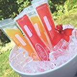Best Ice Pops - Smith's Reusable Zip-Lock Ice Pop Pouches (18 Pack) Review
