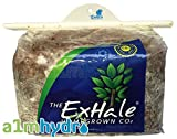 Homegrown Exhale CO2-Tasche für den Gartenbau drinnen und Blattpilz-Tasche