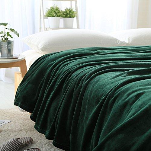 BDUK Reine Farbe Bilevel -Decke faller fusselfreies Tuch Freizeitaktivitäten Mittagsschlaf decken Smaragd 200x230cm ca. 1,6 kg