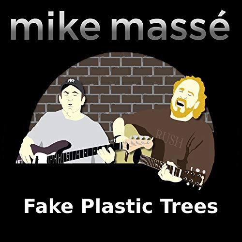 Fake Plastic Trees -