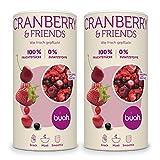 Buah | Gourmet Gefriergetrocknete Cranberry & Friends | 276g | Knuspriger Snack | Bester Geschmack für Smoothie und Müsli | Ohne Zusätze