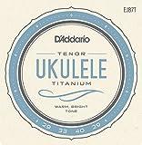 D\'Addario Cordes en titane pour ukulele D\'Addario EJ87T, Tenor