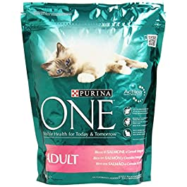 Purina One Adult Salm/Riso Gr.800