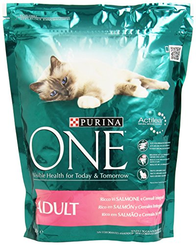 purina-one-adult-salm-riso-gr800