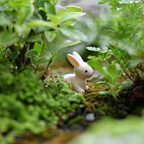 10pz Mini Coniglio Resina Casa Delle Bambole Bonsai Fairy Garden Decori Paesaggio Bianco