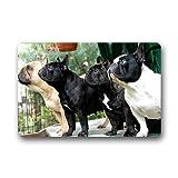 Kaixin J French Bulldog Pack Custom Outdoor Indoor Doormat Personalized Design Machine-Wahable Neoprene Rubber Doormat 31.5x19.5 inch