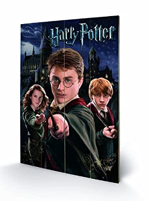 Harry Potter - Harry Ron Hermoine - Wooden Wall Art - 40cm x 59cm