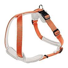 HUNTER Neoprene Harness, 2X-Large, 81-100 cm, 25 mm, Orange/Cream